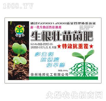 生根壮苗菌肥-地邦泉