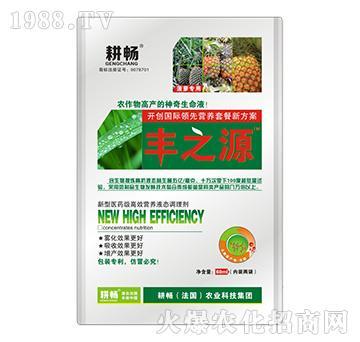 菠萝专用营养液肥-丰之源-耕畅
