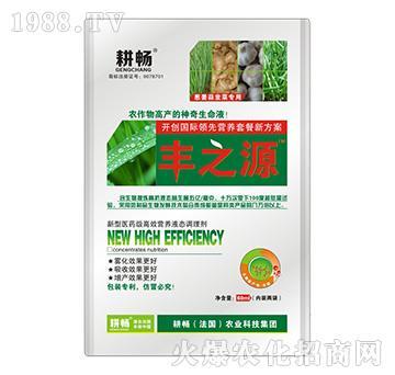 葱姜蒜韭菜专用营养液肥-丰之源-耕畅