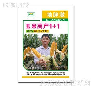 玉米高产1+1-地胖墩(袋)-爱地生