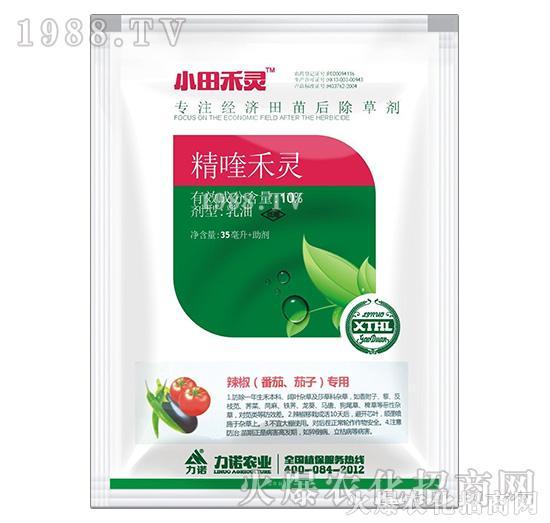 10%精喹禾灵-辣椒(番茄、茄子)专用-小田禾灵-力诺农业1
