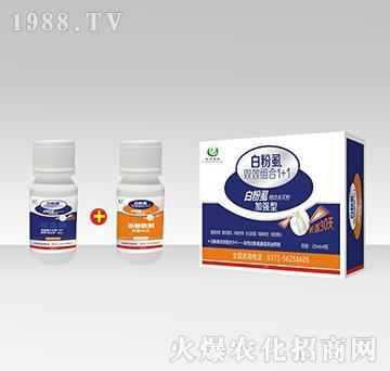 白粉虱双效组合1+1-加强型白粉虱特效杀灭剂-裕邦生物