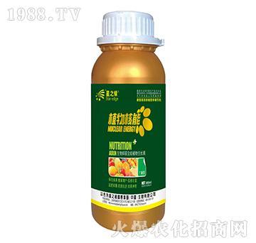 �V�V型-植物核能300