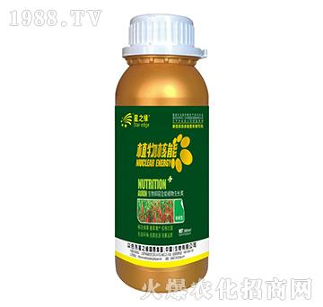 辣椒型-植物核能300ml-星之�