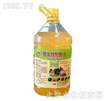 微生物原菌液-金山生物