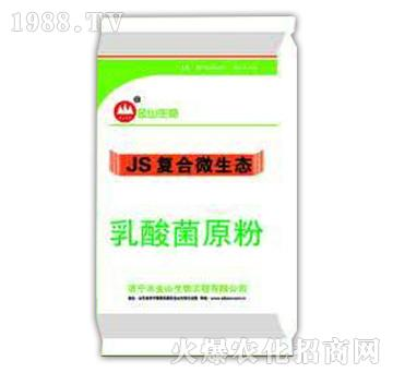 乳酸菌原粉-JS复合微
