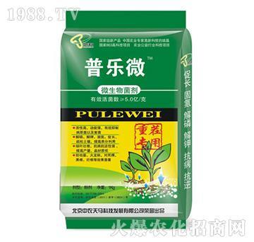 中农天马-普乐微重茬专用微生物菌剂