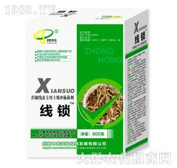 中农天马-线锁-专用土壤冲施菌剂
