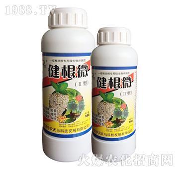 中农天马-健根微-促根壮根专用冲施菌剂