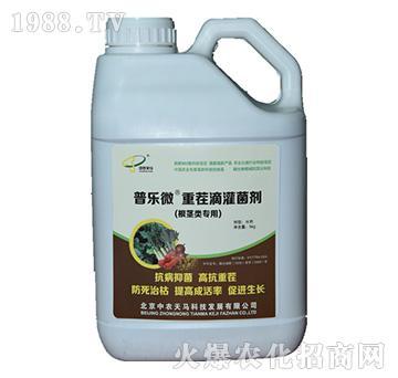 普乐微根茎类专用重茬菌