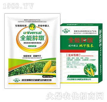 玉米叶面肥-全能胖墩-为峰