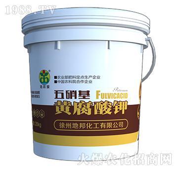 五硝基黄腐酸钾母液-地邦泉