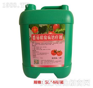 番茄根腐病治疗剂-农博士