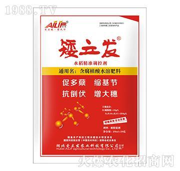 矮立发水稻精准调控剂-爱立发