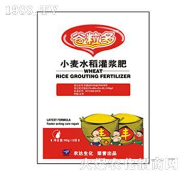 小麦水稻灌浆肥-谷粒多