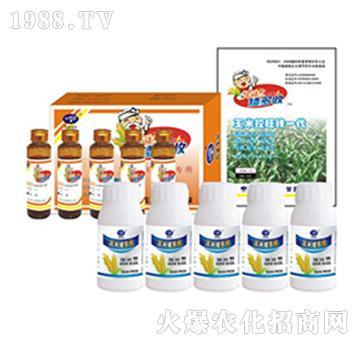 玉米矮多收-农达生化