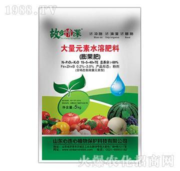 膨果型大量元素水溶肥15-5-40+TE-故乡情深-心连心植物