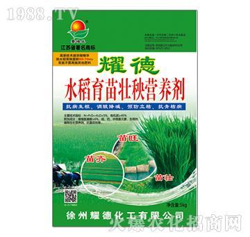 水稻育苗壮秧营养剂-耀