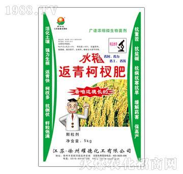 水稻返青柯杈肥-耀德化