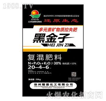 复混肥料20-4-6-黑金子-耀德化工