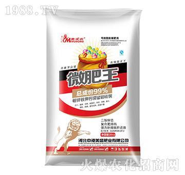 微肥王-中港美盛