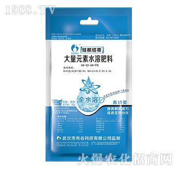 大量元素水溶肥料10-52-10+TE-硅根结蒂-秀谷