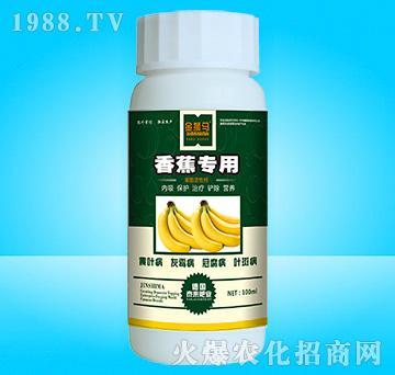 香蕉专用-金狮马-泰来