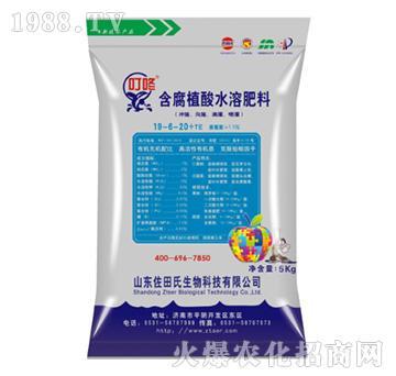 含腐殖酸水溶肥19-6