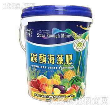 碳酶海藻肥-农圣人