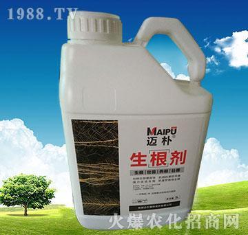 生根剂5L-迈朴