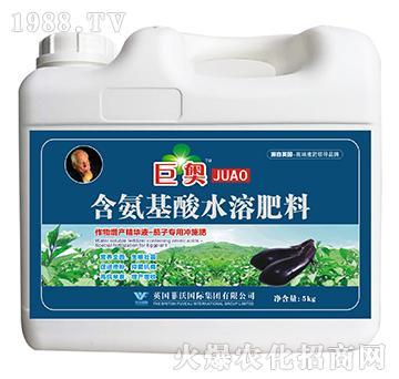 茄子专用冲施肥-含氨基酸水溶肥料-巨奥