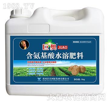土豆专用冲施肥-含氨基酸水溶肥料-巨奥