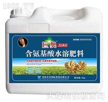 大姜专用冲施肥-含氨基酸水溶肥料-巨奥