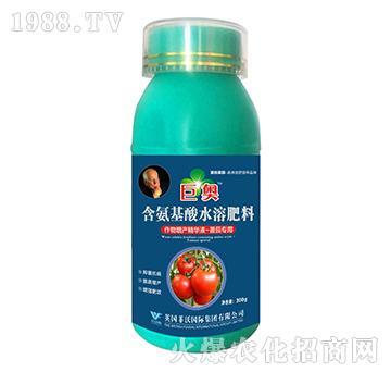 番茄专用-含氨基酸水溶肥料-巨奥