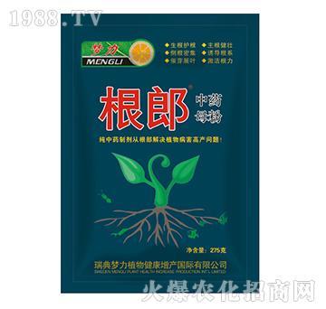 纯中药母粉生根螯合剂-根郎-海俐丹