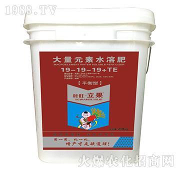 平衡型大量元素水溶肥19-19-19+TE-叶旺・立果-海俐丹