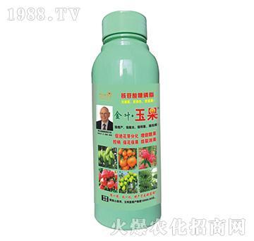 金叶・玉果-核苷酸糖磷脂-海俐丹