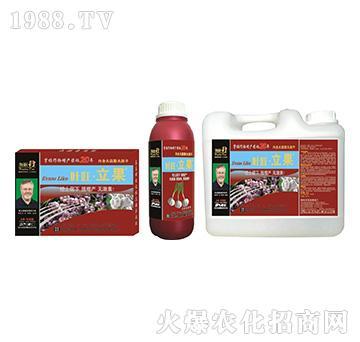 大蒜营养增产精华液-叶