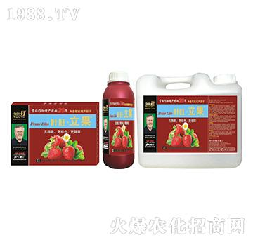 草莓营养增产精华液-叶旺・立果-海俐丹