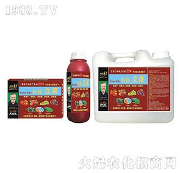 瓜果营养增产精华液-叶