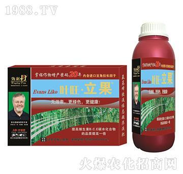 豆角营养增产精华液-叶