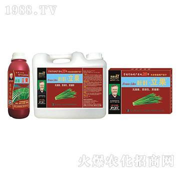 韭菜营养增产精华液-叶