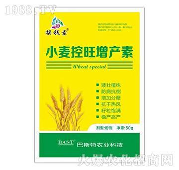 小麦控旺增产剂-摇钱素
