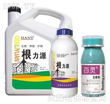 根力源+生根剂-百灵