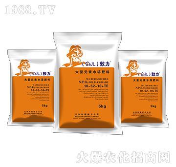 大量元素水溶肥料10-52-10+TE-敦力-施耐力