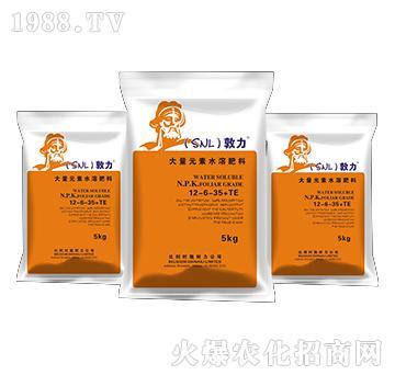 大量元素水溶肥料12-6-35+TE-敦力-施耐力