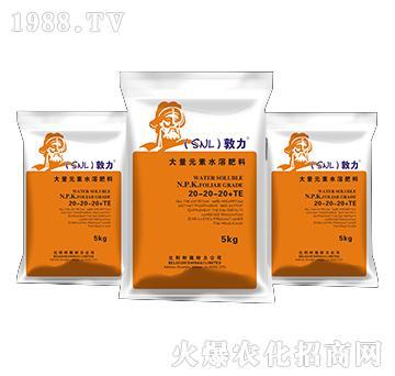 大量元素水溶肥料20-20-20+TE-敦力-施耐力