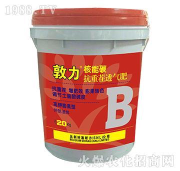 核能碳抗重茬透气肥(B)-敦力-施耐力