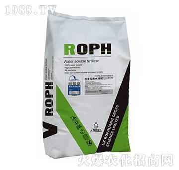 大量元素水溶肥20-20-20+TE-罗普皇-博克