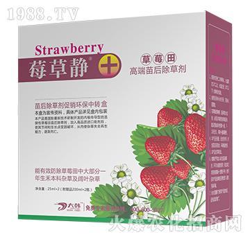 莓草净-大韩